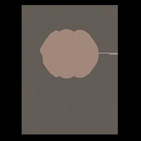 PROYECTO 180 - 2 servicios OK