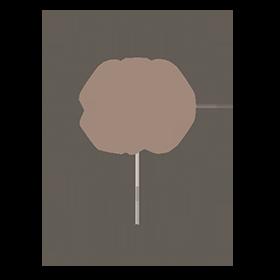 PROYECTO 270 - 3 servicios OK