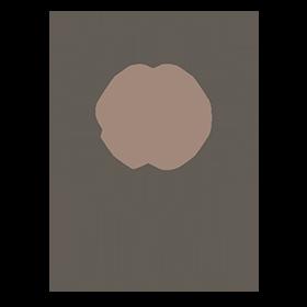 PROYECTO 90 - 1 servicio OK